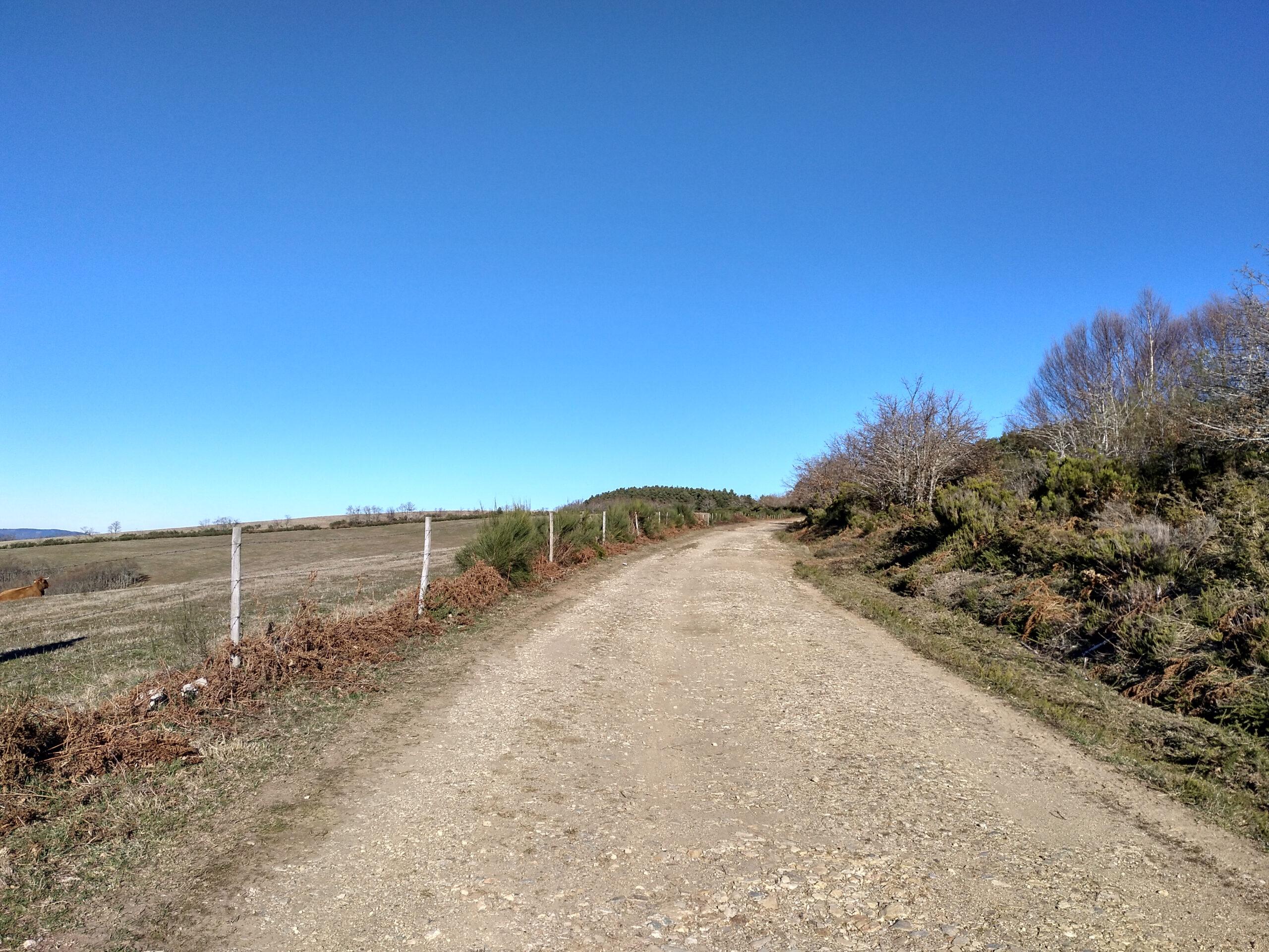 Pavimento del Camino Real de Carlos III