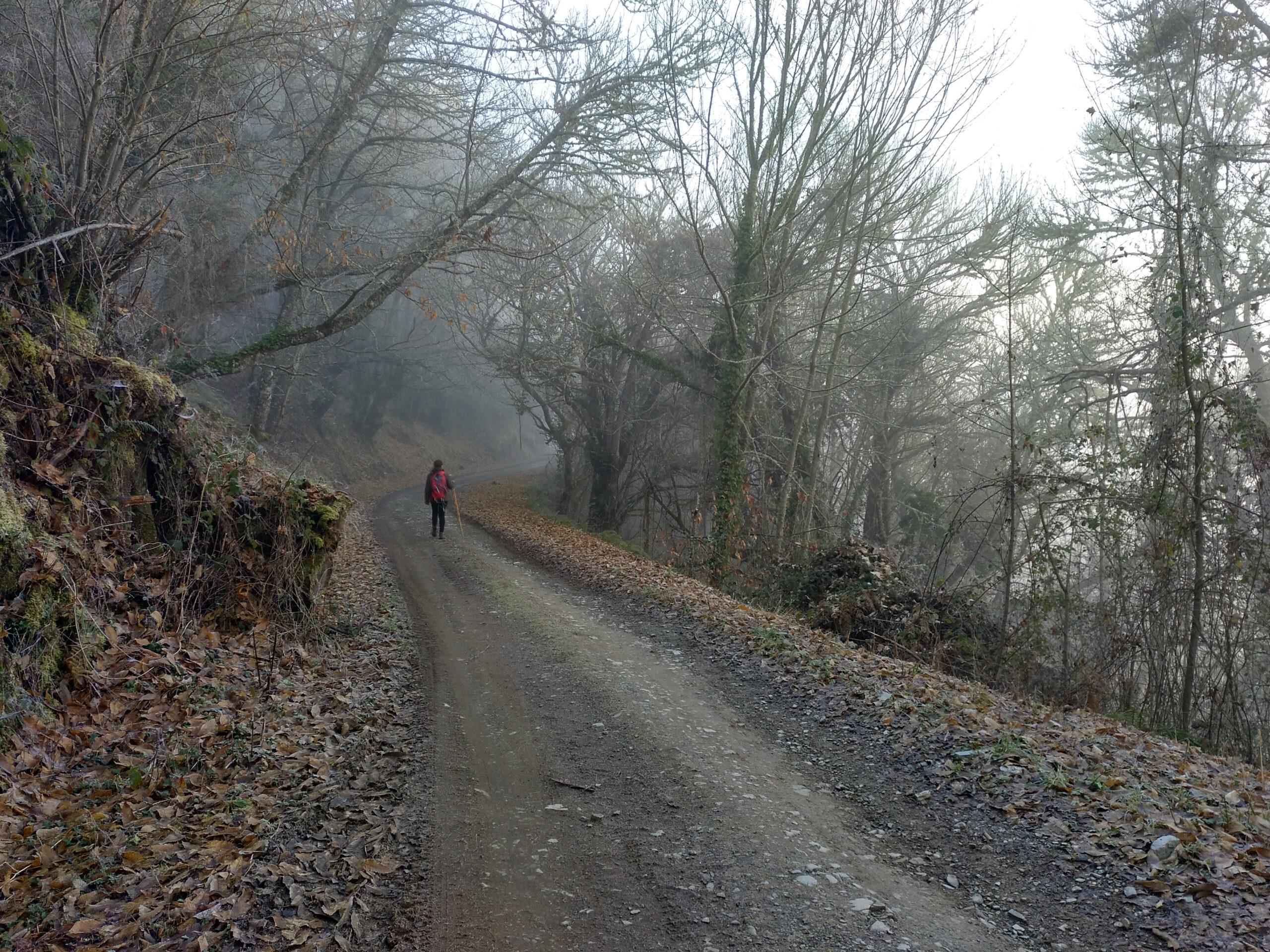 Iniciando la Cuesta de Espariz después de cruzar Doncos
