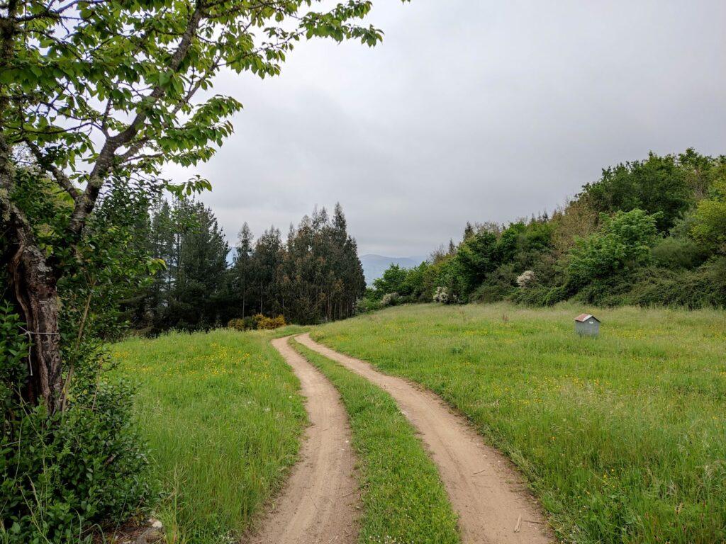 El Camino en la Sierra de Horta